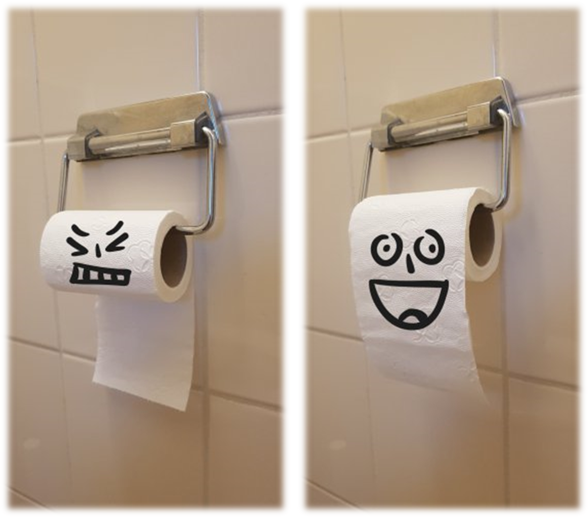 toiletrolophanging.png